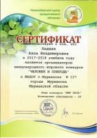 Сертификат Ладной. ЧиП